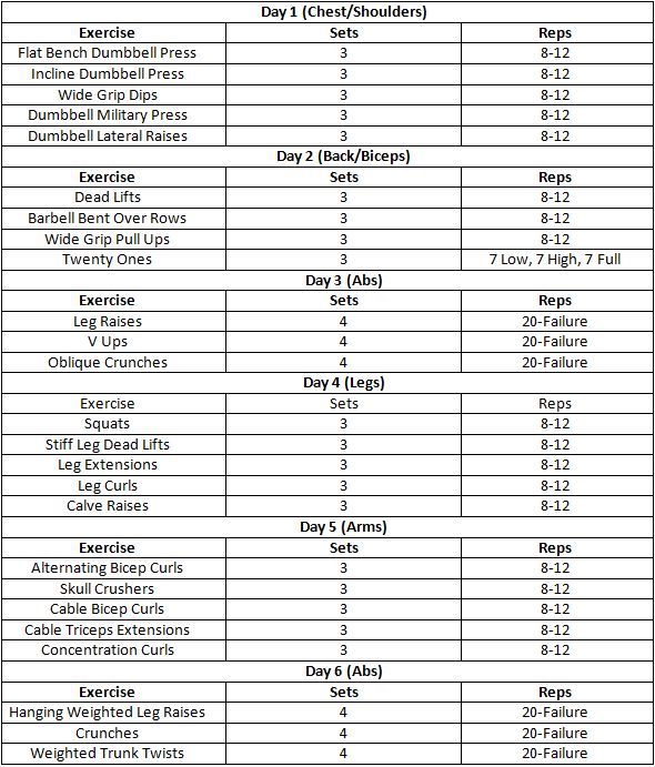 Bodybuilding chart for beginners pdf
